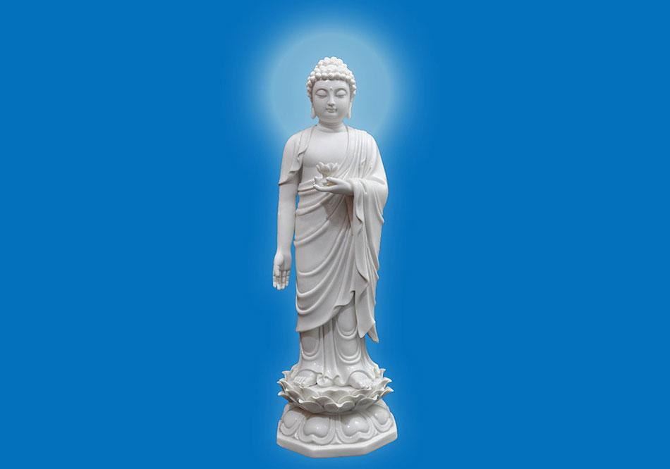 世界教主阿弥陀佛圣诞 读无量寿传奇