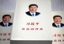 """刘亚洲:习总书记""""治国理政""""篇篇传承红色基因"""