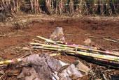 缅军机炸弹落入的村庄:弹片穿透铁皮
