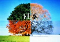"""春夏秋冬""""天人相應"""" 看四季該如何正確養生"""