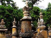神秘壮观的中国佛教七大塔林,你见过几个?