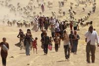 【第44期】 ISIS,這一年到底殺了多少人?