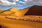 甘肃敦煌迎夏季旅游高峰 观光驼队绵延近1公里