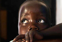 【第46期】全球,施加给男孩们的暴力