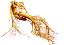 養生:14種食物最能補腎 壯陽效果堪比藥物