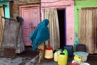 【第50期】德里,黑市里的生命之水