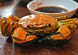 吃螃蟹的季節到了!教你4個最健康吃法