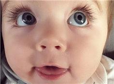 澳大利亞萌寶長睫毛大眼睛俘獲13萬粉絲
