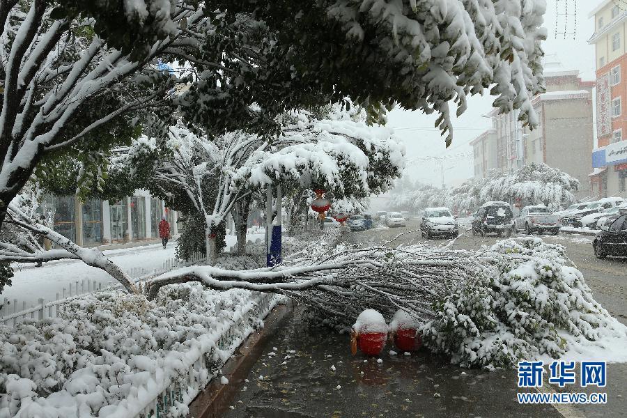 #(生态)(3)金秋哈密降大雪