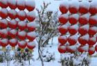 金秋哈密降大雪