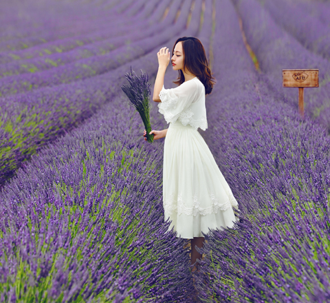 最美花材的約定 探尋阿芙精油全球尋香之旅