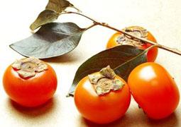 深秋柿子紅 四類人不宜多吃柿子