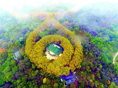 南京美龄宫现 最美项链 景观 大公财经 大公网