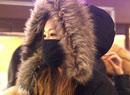 常戴口罩易感冒?五個錯誤的防寒方法損健康