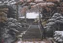 看日本画家如何将寺院的春夏秋冬藏进画中