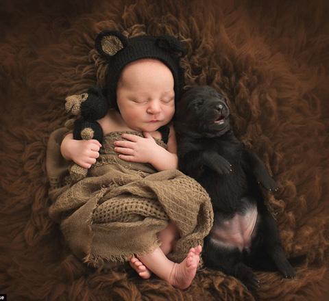 融化人心的图集 宝贝们与宠物的幸福瞬间