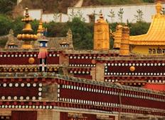 宗喀巴大师的诞生地塔尔寺 十万狮子吼佛像的殊胜加持
