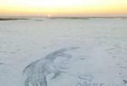 东北爷们雪地霸气示爱