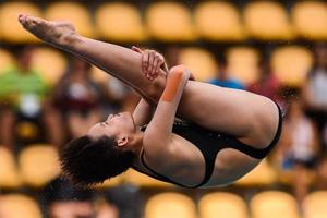 跳水世界杯中国再夺2金 任茜获12个10分十米台夺冠