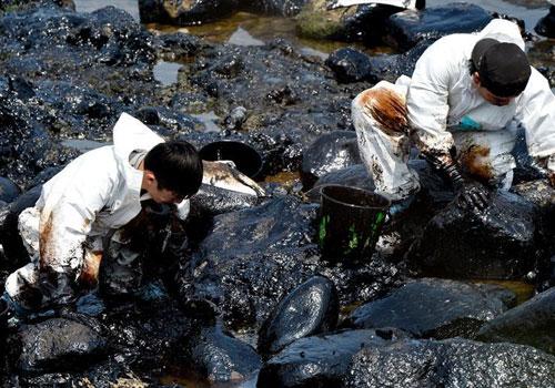 台灣一艘貨櫃船擱淺 重油泄漏污染