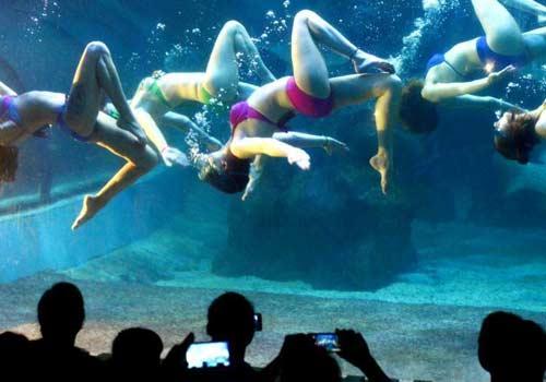 俄國水下芭蕾傾情獻藝