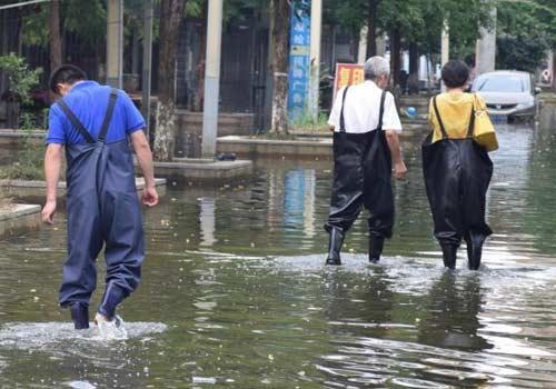 武汉:渍水渐消退 灾民妥善安置