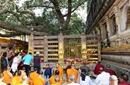 佛学苑|佛陀的足迹 朝圣印度佛教圣地给了我新的生命