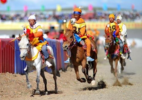 西藏那曲举办场内速度赛马