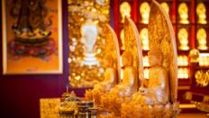 探秘珠海普陀寺莊嚴精美的佛像