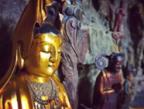 小沙彌與寺院小菩薩的日常:做眾生的不請之友