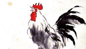 【有料历史】欣逢鸡年畅谈鸡