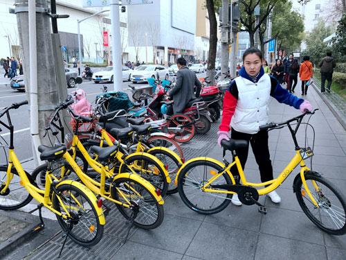 【全景扫描】五彩自行车 扮靓城市新街景