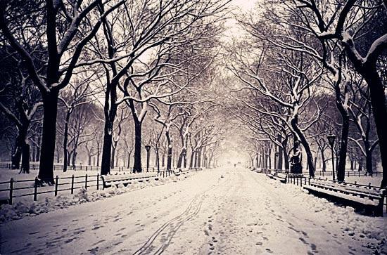 """""""紐約下雪了""""/劉荒田"""