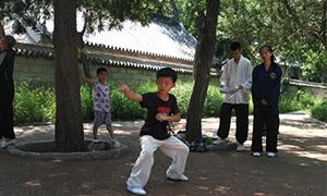最小习武男孩仅4岁 崂山道教玄真内家拳拳术展演收官