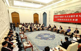 VR|十九大甘肅省代表團討論
