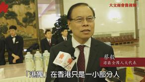 """蔡毅:香港絕大部分民意反""""港獨"""""""