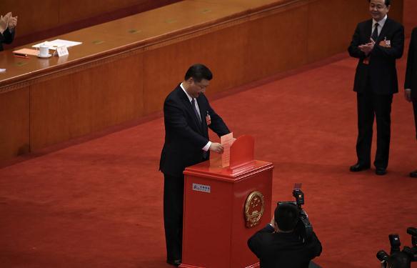 北京观察:参天之木 必有其根