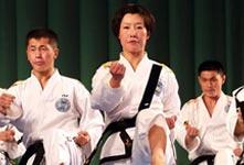 韓朝跆拳道示範團在平壤聯合表演