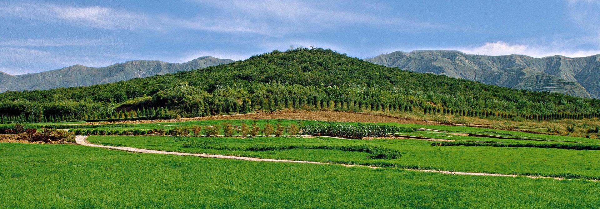 陝82帝王陵星羅棋佈 珍貴遺產展輝煌文化