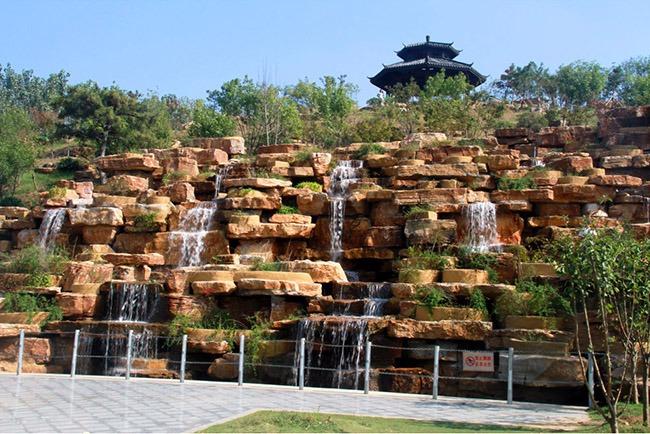 亲近自然、休闲娱乐,临颍黄龙湿地保护区风景独好