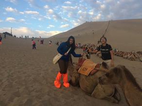 不畏高温 沙漠中传敦煌文化