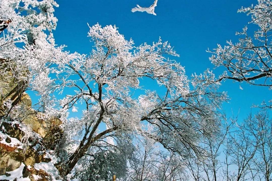 冰雪盛宴/龙峪湾景区 景色至纯至美让人赞叹连连